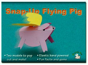 303020 - Rob Ives - Snap Up Flying Pig